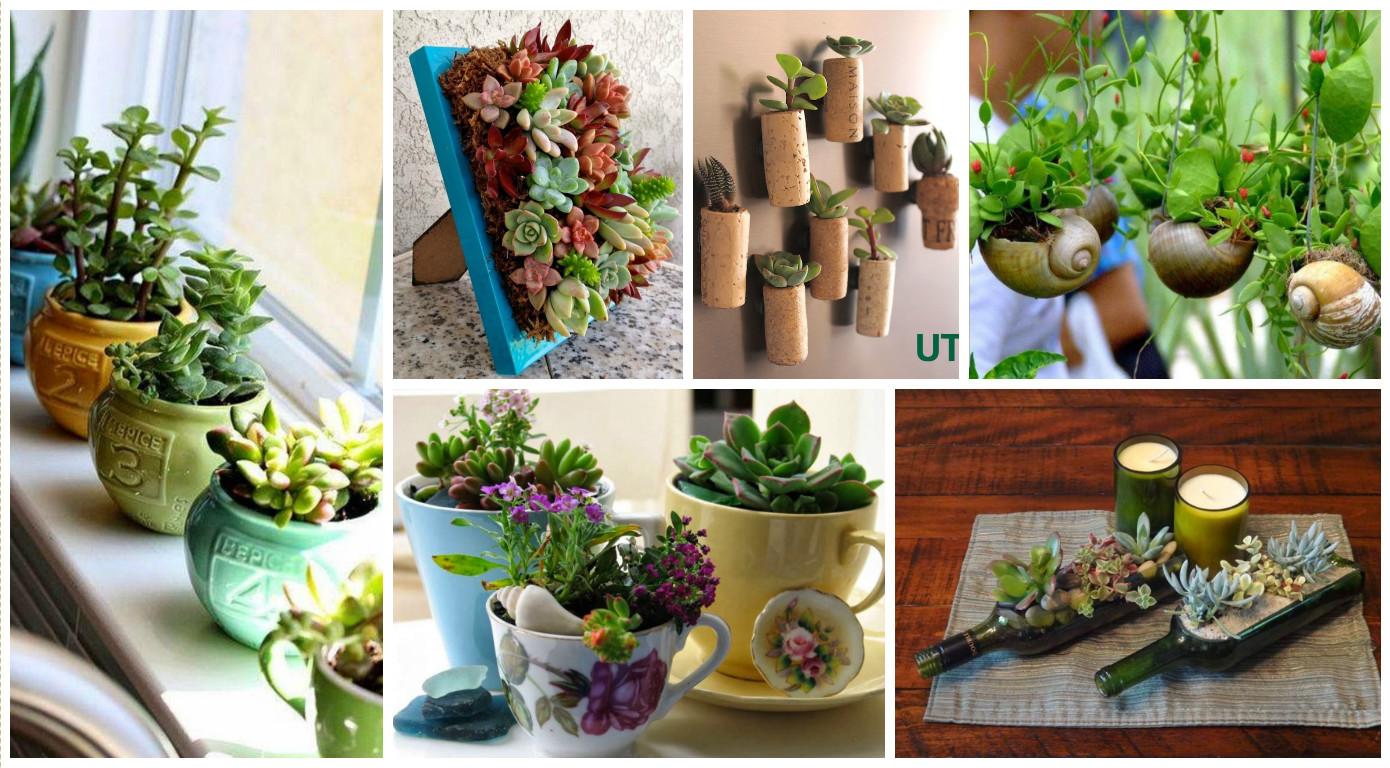 15  Ideias Criativas DIY para Cultivar Plantas em Casa #406E19 1390 768