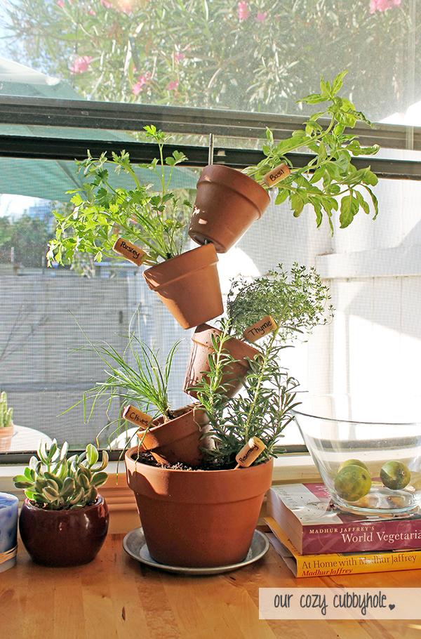 plantas dentro de casa 10