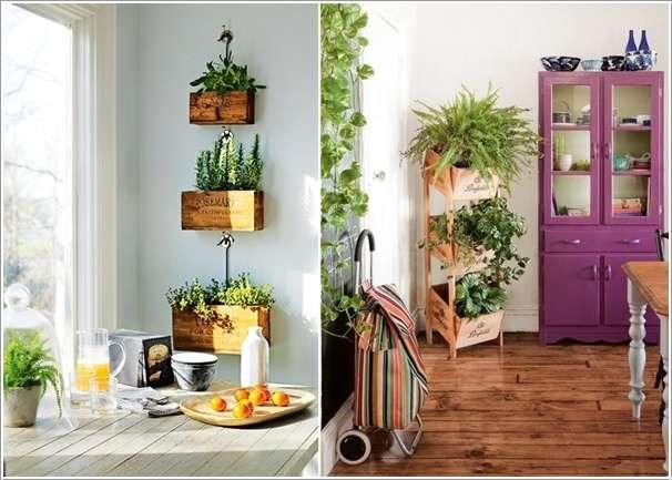 plantas dentro de casa 11