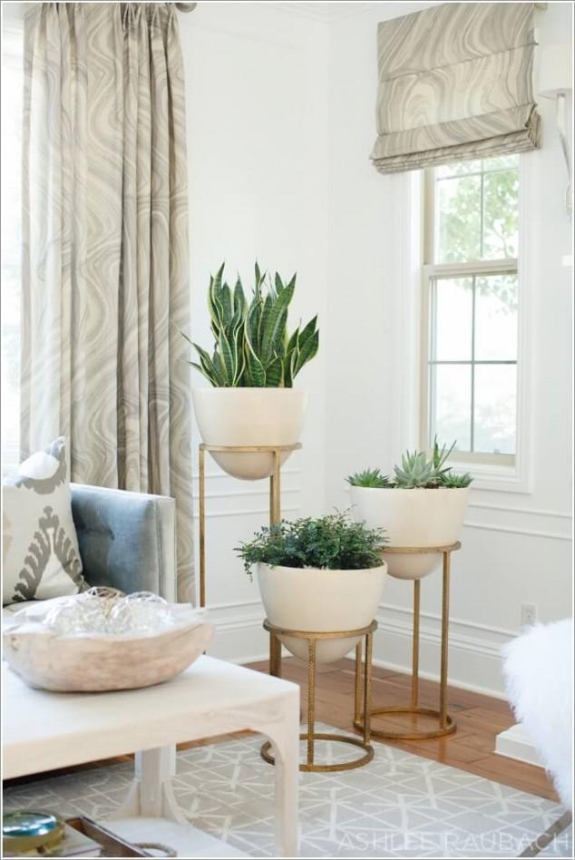 plantas dentro de casa 2